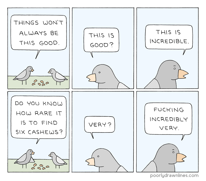 "Image description: a comic in six panels, two rows of three. Two birds stand over six cashews. The bird on the left says, ""Things won't always be this good."" The bird on the right says, ""This is good?"" The bird on the left says ""This is incredible."" The bird on the left points at the cashews with its wing and says, ""Do you know how rare it is to find six cashews?"" The bird on the right says, ""Very?"" The bird on the left says ""Fucking incredibly very."""